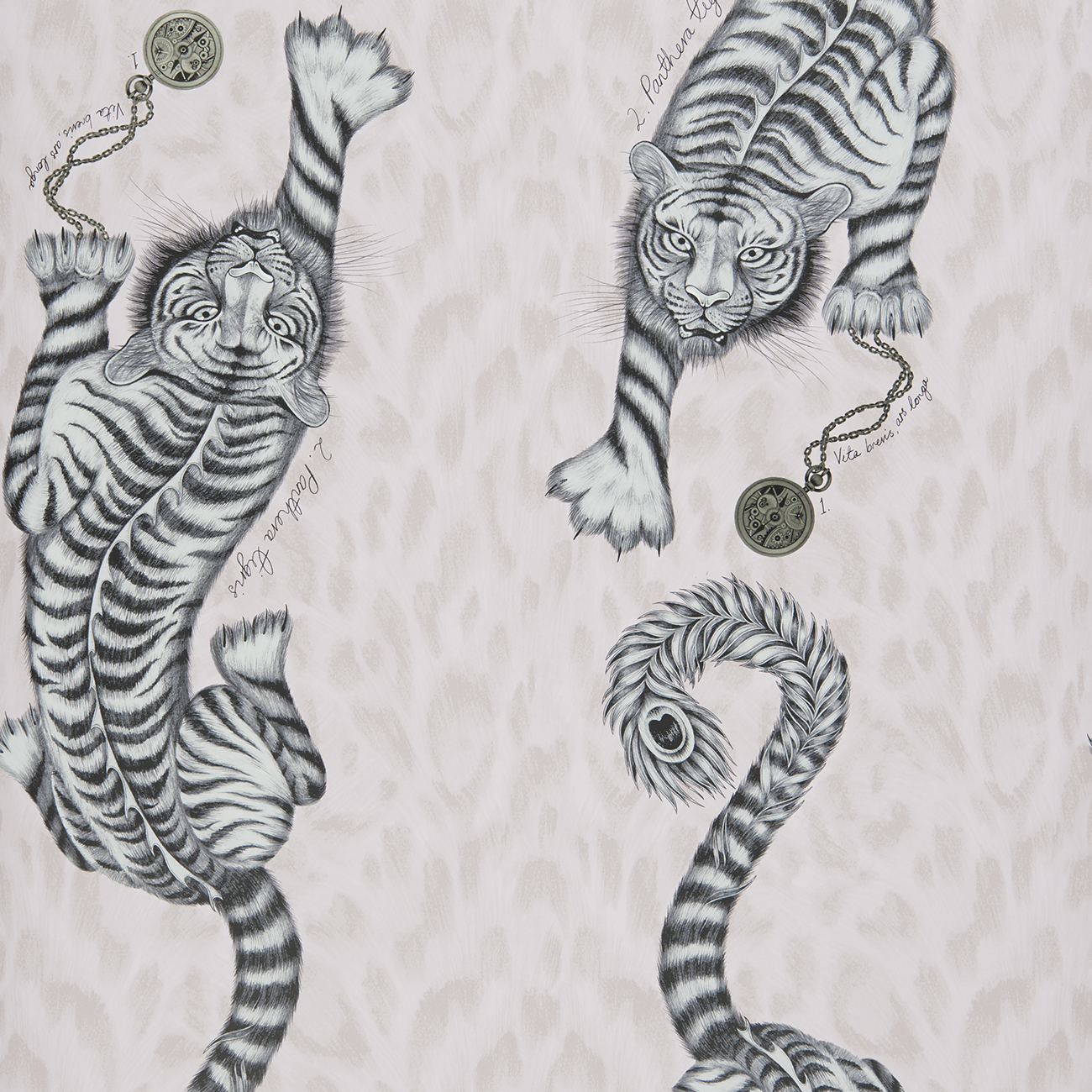 Tigris Wallpaper in colour way Pink from the Animalia Wallpaper collection designed by Emma J Shipley for Clarke & Clarke